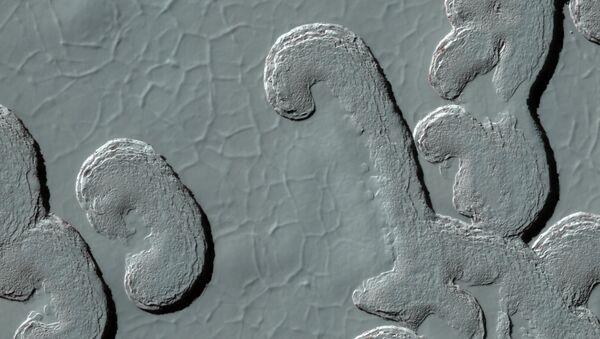 Landforms on Mars (NASA, Mars, 2009) - Sputnik France
