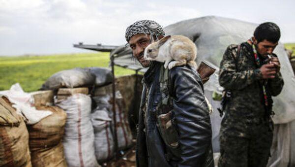 Курдский боец позирует с кроликом на окраине сирийского города Кобани - Sputnik France