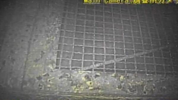 Un robot filme l'intérieur de Fukushima - Sputnik France