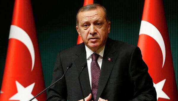 Президент Турции Реджеп Тайип Эрдоган - Sputnik France