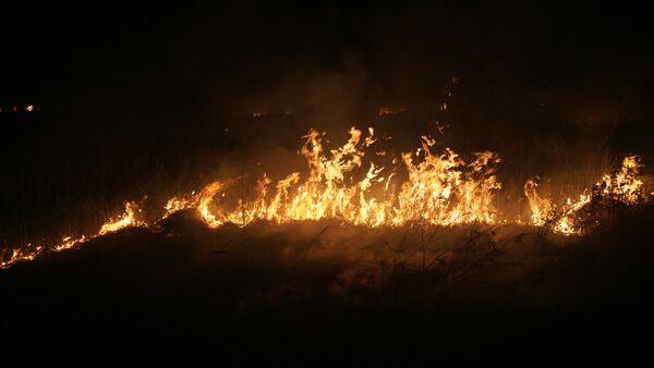 Лесной пожар, возникший в результате взрывов на Приволжском государственном боеприпасном испытательном полигоне - Sputnik France