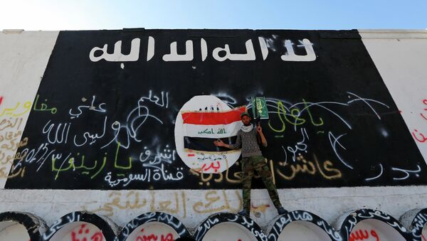 A member of militias known as Hashid Shaabi stands next to a wall painted with the black flag commonly used by Islamic State militants, in the town of al-Alam March 10, 2015 - Sputnik France