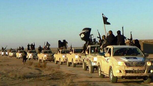 Combattants de l'Etat islamique - Sputnik France
