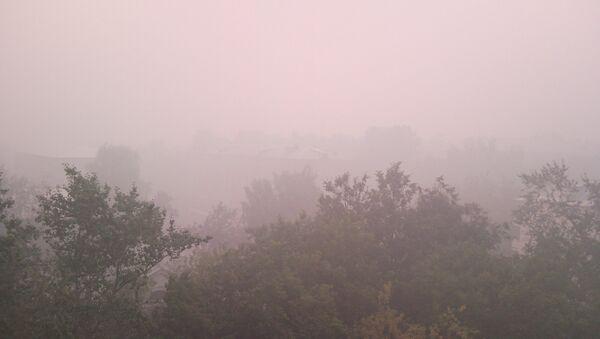 Москва и Подмосковье задохнулись в Дыму. Егорьевск - Sputnik France