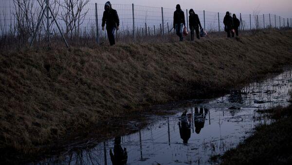 FILE - In this Feb. 17, 2015 file photo Afghan migrants trek their way to the Serbian border with Hungary close to Hajdukovo, 150 kilometers north of Belgrade, Serbia - Sputnik France