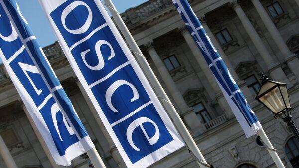 Флаги с логотипом ОБСЕ в Вене - Sputnik France