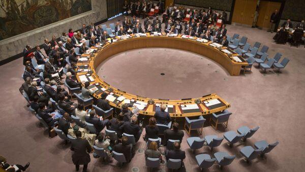 UN Security Council - Sputnik France