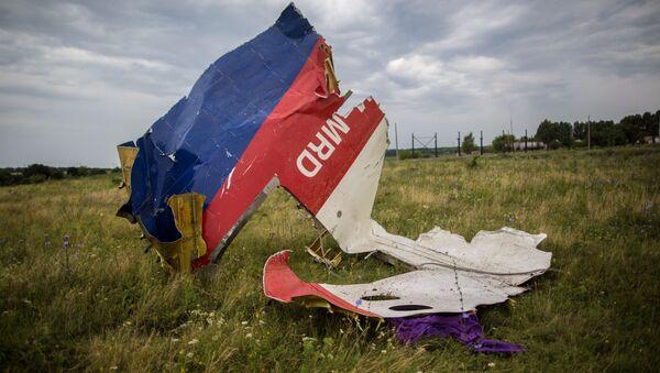 Обломки авиалайнера Boeing-777 в районе Шахтерска - Sputnik France