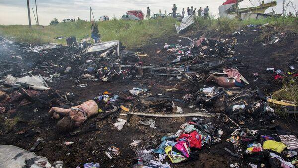 Site du crash du Boeing malaisien en Ukraine - Sputnik France