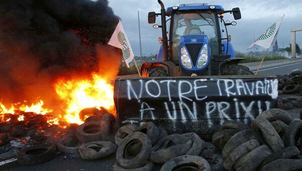 Une action de protestation d'agriculteurs en France - Sputnik France