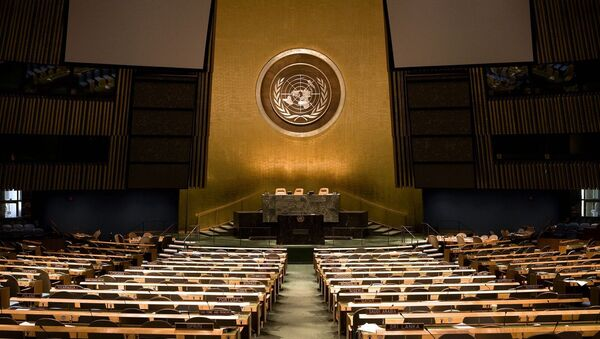 L'Assemblée générale de l'ONU - Sputnik France