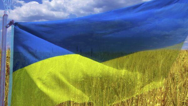 Le drapeau ukrainien - Sputnik France