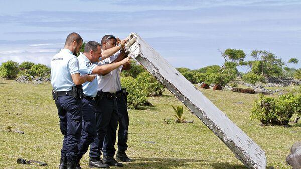 Un fragment d'aile découvert à La Réunion - Sputnik France