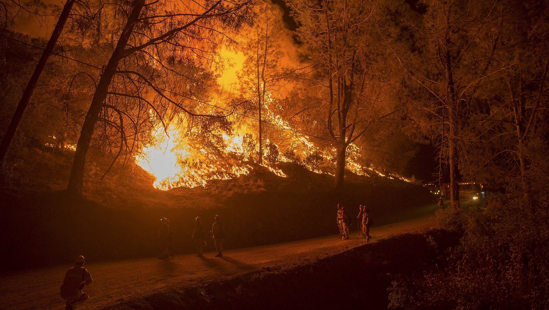 Incendies en Californie.  - Sputnik France, 1920, 12.08.2021