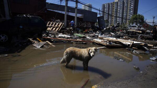 Villes chiliennes après un violent séisme - Sputnik France