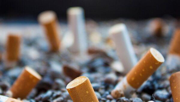 Cigarette butts - Sputnik France