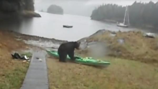 La jeune fille a menacé l'ours avec sa bombe au poivre en le suppliant de ne pas s'attaquer à l'embarcation - Sputnik France