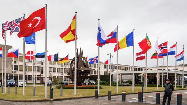Drapeaux des pays de  l'Otan - Sputnik France