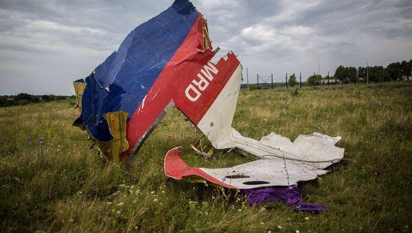 Débris du Boeing-777, vol MH17 - Sputnik France