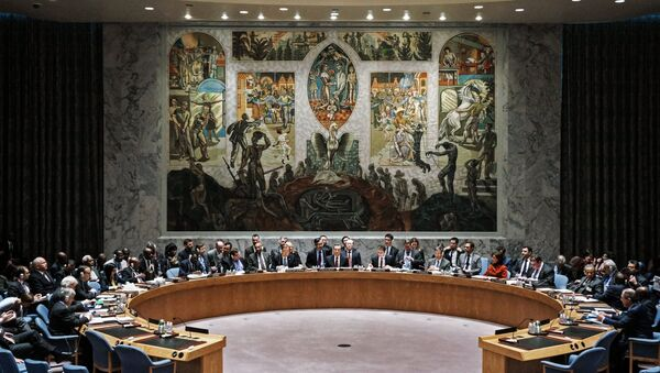 Session du Conseil de sécurité - Sputnik France