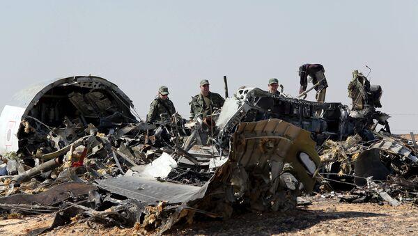Des experts russes sur les lieux du crash d'un Airbus de Metrojet en Egypte - Sputnik France