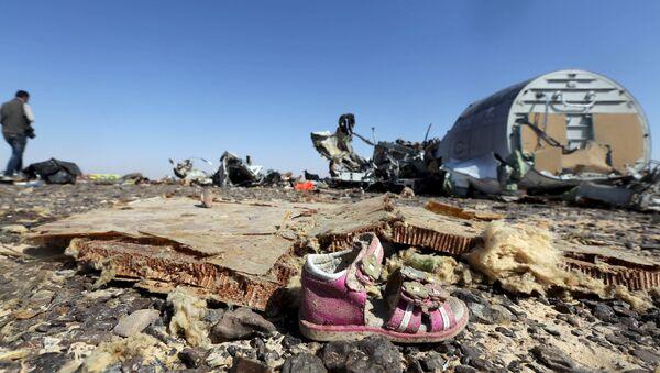 Les débris de l'Airbus A321 en Egypte - Sputnik France