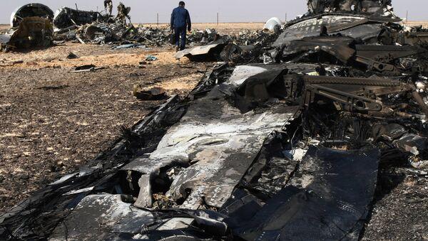 des débris de l`avion A321, Egypte, Novembre 1, 2015 - Sputnik France