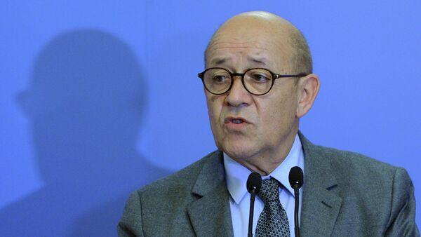 Le ministre français de la Défense Jean-Yves Le Drian - Sputnik France