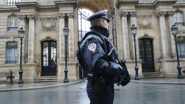 A police officer is in faction in front of the Elysee Palace in Paris - Sputnik France