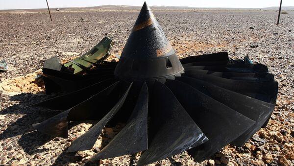 Crash de  l'A321 en Egypte - Sputnik France