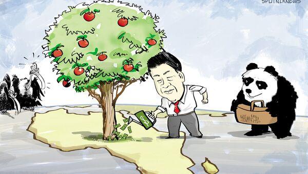 La Chine mise sur l'Afrique - Sputnik France