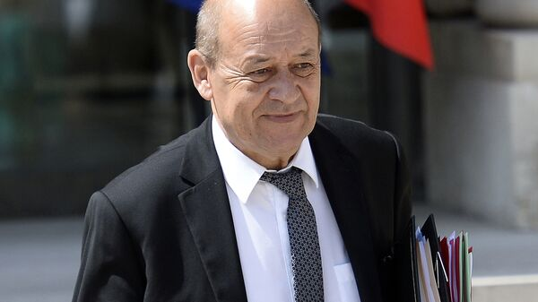 French minister of Defence Jean-Yves Le Drian leaves the Elysee Palace in Paris on June 17, 2015 after the weekly cabinet meeting.  - Sputnik France