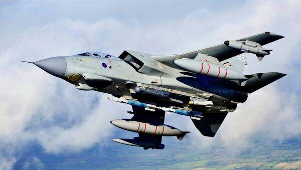 Un avion de combat britannique percute un chien errant - Sputnik France
