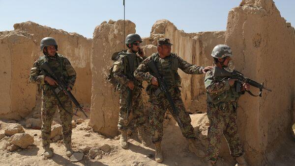 L'Armée nationale afghane (ANA) - Sputnik France