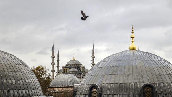 Vue sur la Mosquée bleue d'Istanbul - Sputnik France