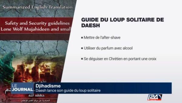 Daech publie un guide pour terroristes débutants - Sputnik France