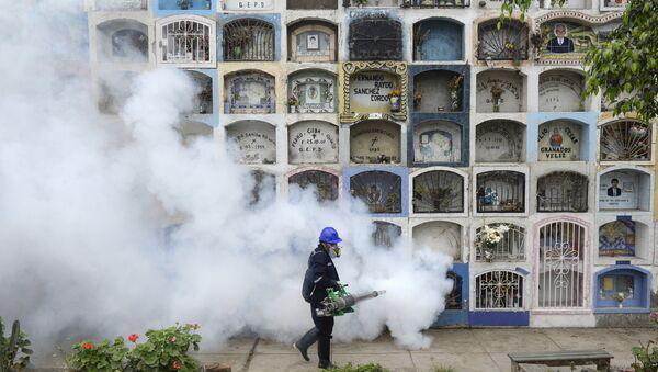 Un spécialiste désinfecte le cimetière Nueva Esperanza, dans la banlieue de Lima le 15 Janvier 2016 - Sputnik France