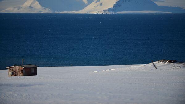 Au bord de l'océan glacial arctique - Sputnik France
