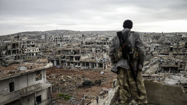 Musa, a 25-year-old Kurdish marksman, stands atop a building as he looks at the destroyed Syrian town of Kobane, also known as Ain al-Arab, on January 30, 2015 - Sputnik France