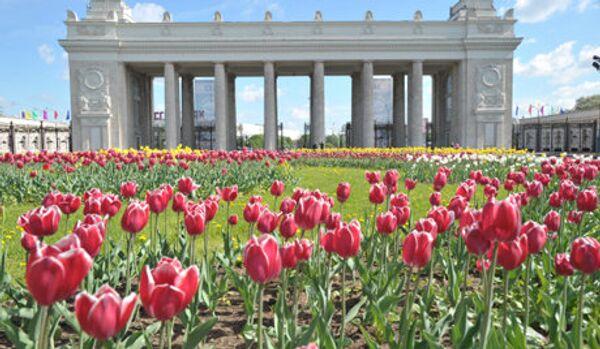 Deux Hyde Park seront créés à Moscou - Sputnik France