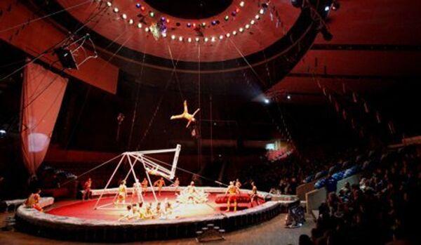 Cirque de Moscou : accident le plus grave de l'histoire - Sputnik France