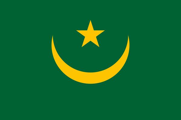 Mauritanie/présidentielle : Abdel Aziz vainqueur avec plus de 80% des voix (résultats officiels provisoires) - Sputnik France