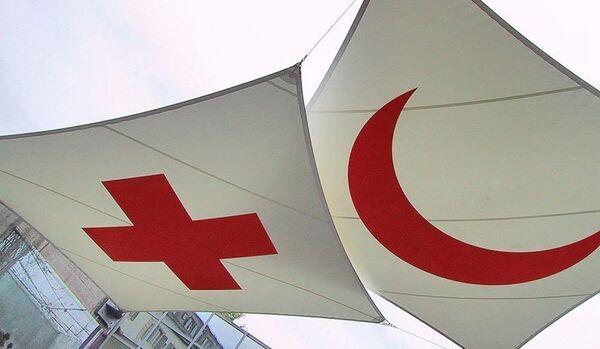 La Croix-Rouge exige une liste détaillée de l'aide humanitaire en Ukraine - Sputnik France