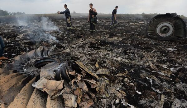 Les causes du crash du Boeing en Ukraine seront rendues publiques en été de 2015 (fonctionnaire néerlandais) - Sputnik France