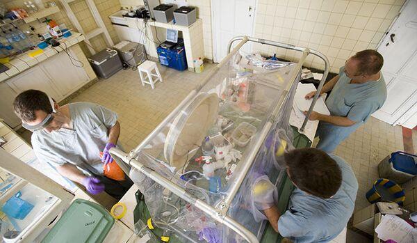 Ebola : plus de 2 000 victimes - Sputnik France