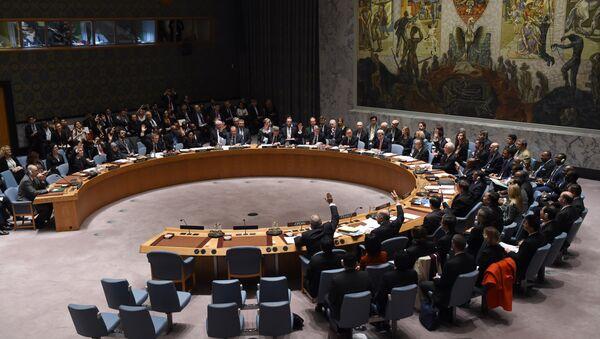 Le Conseil de sécurité de l'ONU - Sputnik France