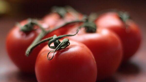 Des tomates japonaises poussent dans le pergélisol en Sibérie - Sputnik France