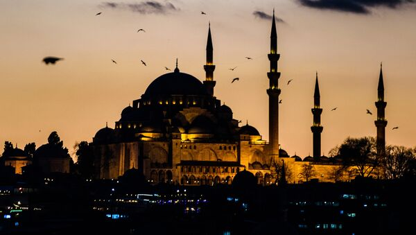 Istanbul, Turquie - Sputnik France
