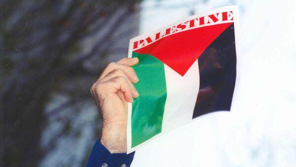 Palestine flag - Sputnik France