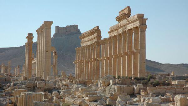 Castelo de Palmira (no fundo da foto) - Sputnik France